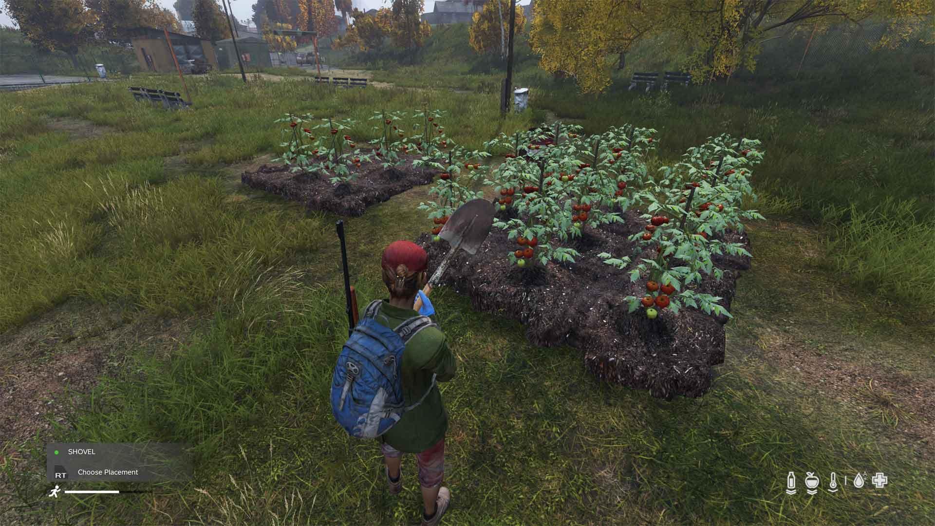 DayZ survival farming