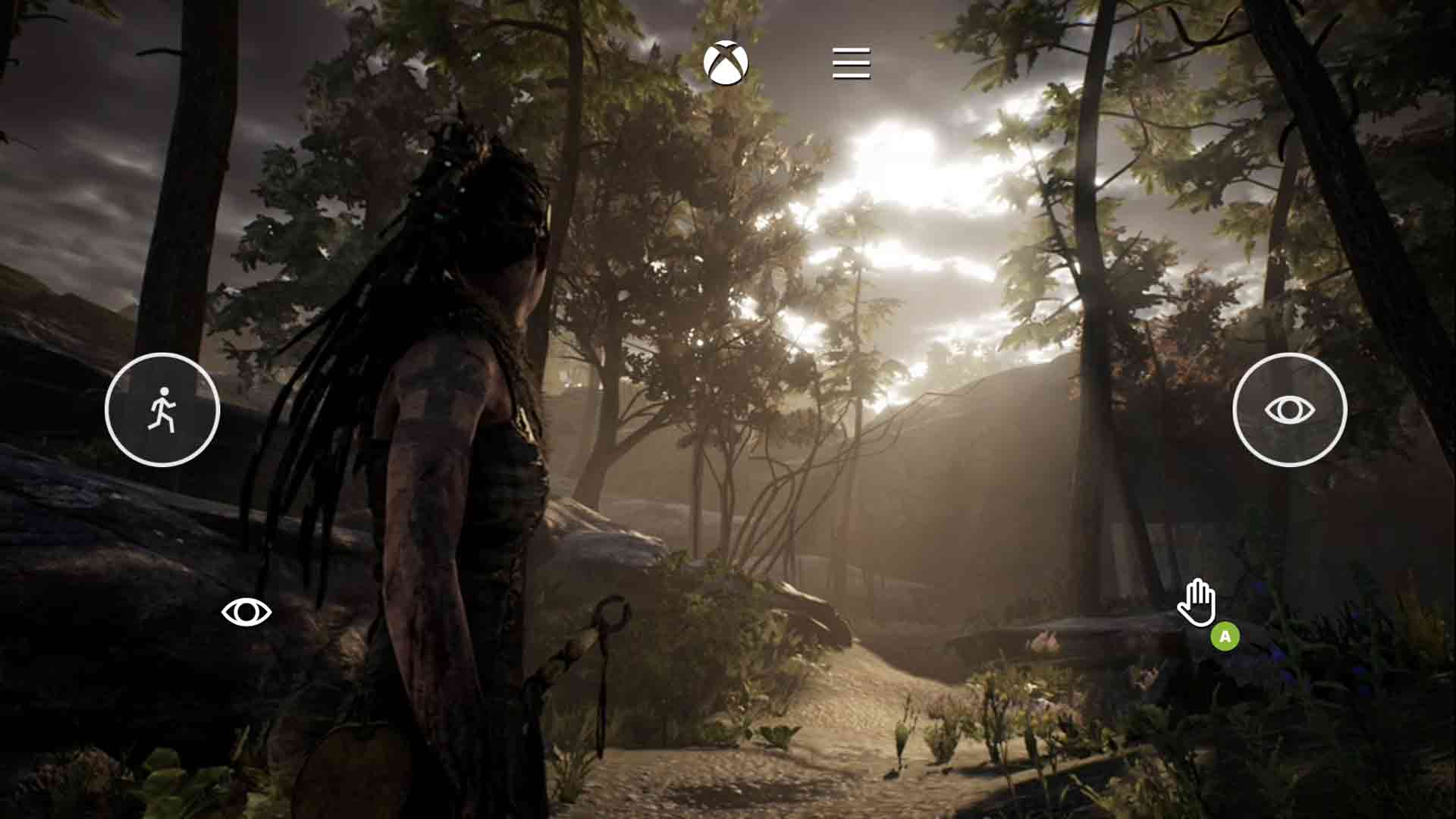 Hellblade Touch Controls