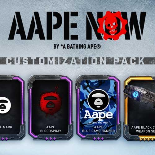 Gears 5 x AAPE Customization Pack Box Art