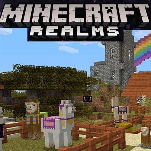 Minecraft Realms Hub