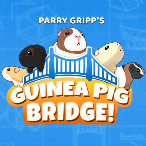 Guinea Pig Bridge Game of the Year